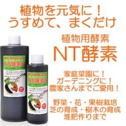画像1: 植物を元気に!家庭菜園・ガーデニング〜農家さんまで!!NT酵素